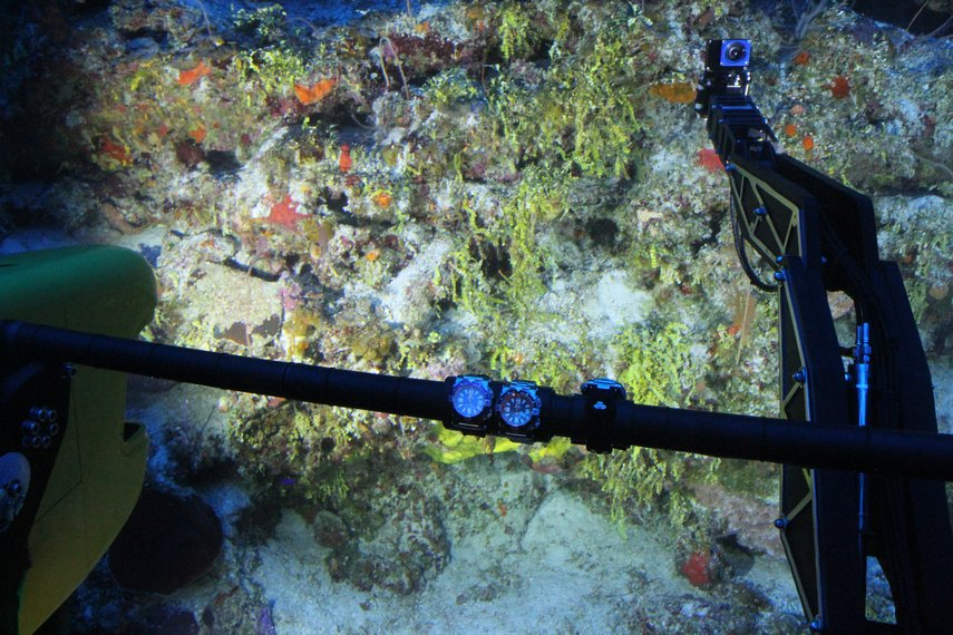 GoBenthic - Specialized camera housing for GoPro