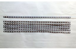 WS2812B 30 LED 0.5m Strip