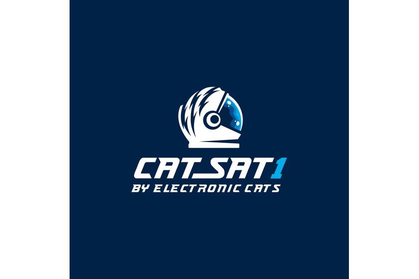 Picosatellite CatSat 1