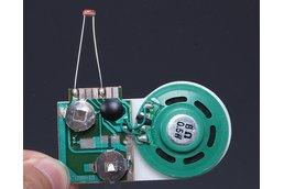 Light Control Voice Module 30s Music(9086)
