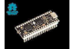nRF52832 Micro Development Kit