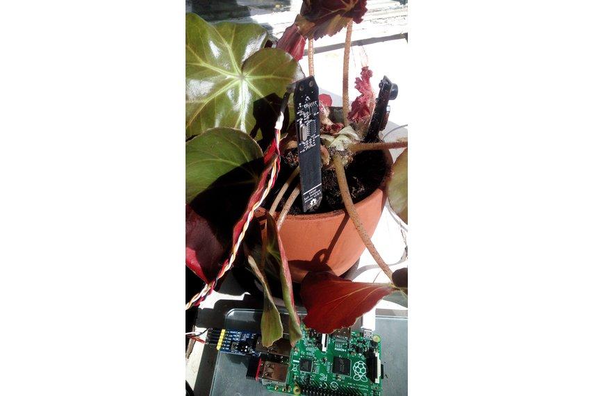 Modbus RS485 soil moisture sensor