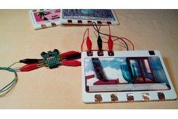 """""""QuizBug"""" CodeBug IoT Series #1"""
